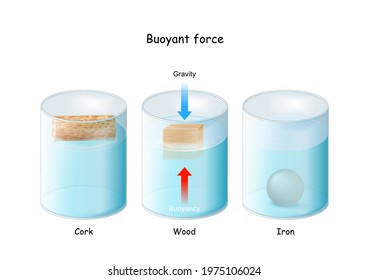 Buoyant force. Archimedes' principle. Iron ball, Wood cube, and Cork floating in glassware. physical law. Beaker with liquid fluid.   educational physics diagram. Vector poster.