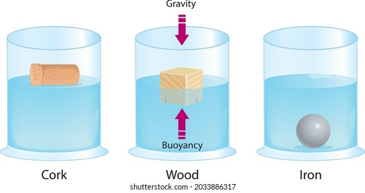 Buoyant force. Archimedes' principle. Iron ball, Wood cube, and Cork stopper floating in glassware. physical law. Educational physics diagram.