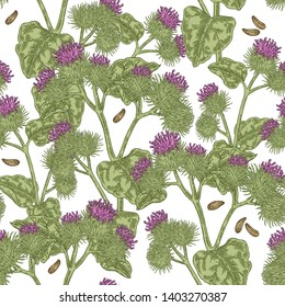 Burdock plant hand drawn. Seamless pattern of burdock flowers, leaves and seeds. Vector illustration.