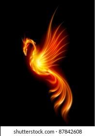 Burning Phoenix. Illustration isolated over black background