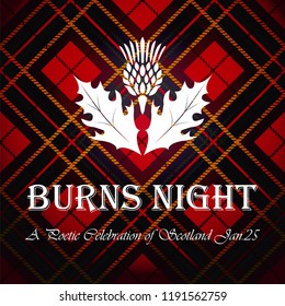 Burns night supper card with thistle on tartan background.