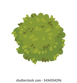 Bush in the form of a circle. Vector illustration on white background.