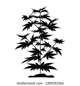 Bush marijuana black silhouette. Cannabinoid. Hemp for the treatment of marijuana oil. Cannabis. Vector illustration on isolated background