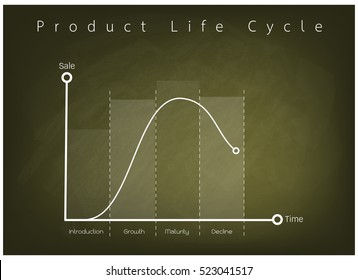 Business and Marketing Concepts, 4 Stage of Product Life Cycle Chart on Green Chalkboard.