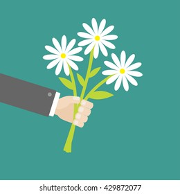 Businessman hand holding bunch bouquet of white daisy flowers. Greeting card.  Green background. Flat material design. Vector illustration