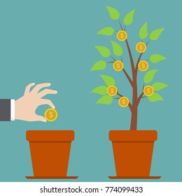 Businessman hand holds golden coin seed over pot to plant money tree