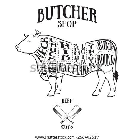 Butcher Cuts Scheme Beef Handdrawn Illustration Vintage Stock Vector