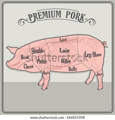Butcher Pig Vector Illustration Butcher Pig Stock Vector Royalty