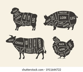 Butcher's meat chart, diagram set. Cuts of Meat. Lamb, Pork, Beef, Chicken meat. Barbecue poster design. Butchery, meat shop, grocery store template. Vector illustration