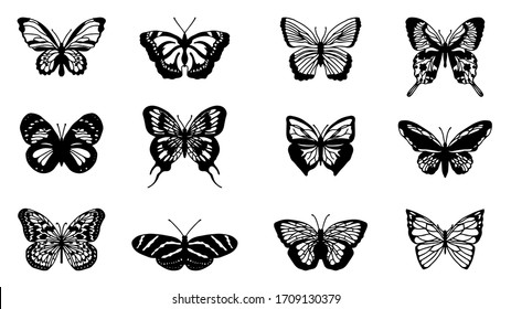 Butterflies carve set, Vector illustration.
