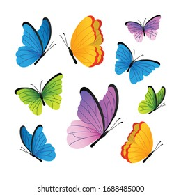 Butterflies. Cute butterflies vector set.