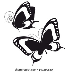 butterflies design vector