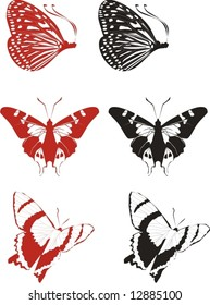 Butterflies. Elements for design. Vector illustration.