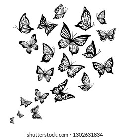 Butterflies flow. Butterfly wing, spring flying insect and flight wave. Fly insects, black drawing butterfly silhouette for greeting card or tattoo sketch. Vector background illustration