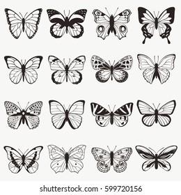 Butterflies graphic vector set