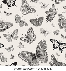 Butterflies. Seamless pattern. Vector vintage classic illustration. Black and white