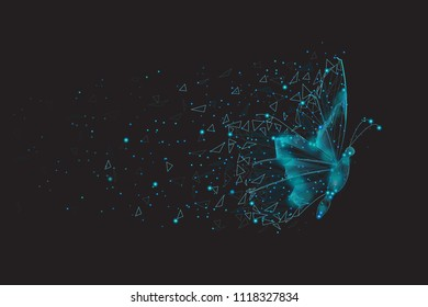 Butterfly Abstract Isolated On Black Background For Web Site Poster Placard Banner