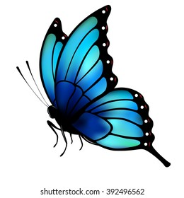 Butterfly with big blue wings on white background. Original hand lettering Spring Time. Illustration for posters, greeting and invitation cards, print and web projects.