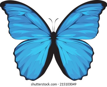 blue butterfly clipart images stock photos vectors shutterstock rh shutterstock com blue butterfly clipart border blue morpho butterfly clipart