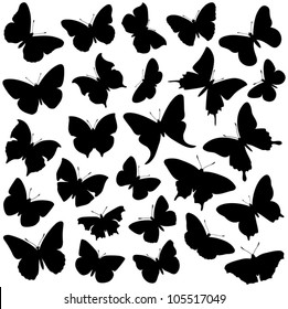 Butterfly collection - vector silhouette