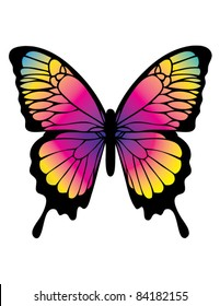 Butterfly in Color
