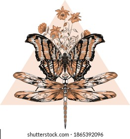 butterfly and dragonfly black  brown monochrome triangle vector illustration