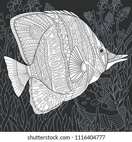 Butterfly fish drawn in line art style. Ocean background in black and white colors on chalkboard. Coloring book. Coloring page. Zentangle vector illustration.