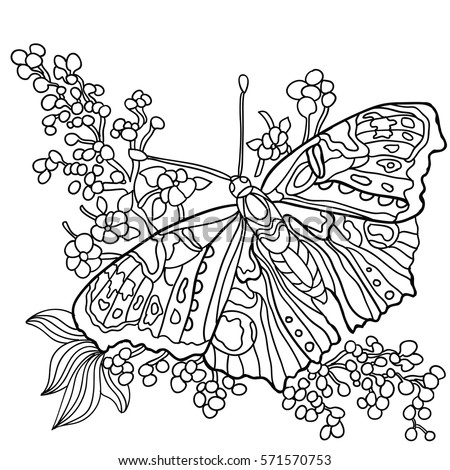 Butterfly Flowers Coloring Book Adult Older Stock Vector Royalty