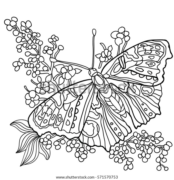 Butterfly Flowers Coloring Book Adult Older Stock ...