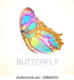 Butterfly flyer illustration. Vector illustration
