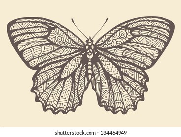 Butterfly, graphic style, hand drawn, vector illustration