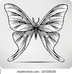3ce2c4e8f Butterfly Drawing for Tattoos Images, Stock Photos & Vectors ...