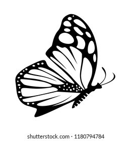 butterfly icon, vector illustrations, beautiful butterfly