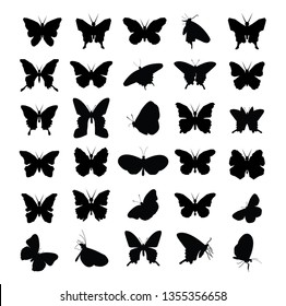 Butterfly icons  - vector
