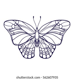 Butterfly isolated line art stock vector illustration. Hand drawn doodle coloring book page.
