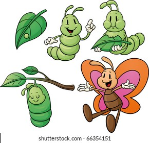 Butterfly life cycle. Vector illustration with simple gradients. All characters on separate layers for easy editing.