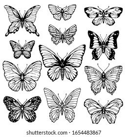 Butterfly line art set isolated on white background. Hand drawn ink illustration. Stock vector collection set, design for coloring book page