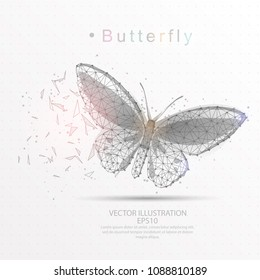 Butterfly line and composition digitally drawn of triangle shape and scattered dots low poly wire frame on white background.