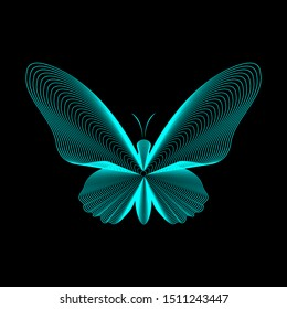 Butterfly lines vector illustration. Neon lines on black eps10