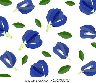 Butterfly pea flower or blue pea, clitoria ternatea and green leaf isolated on white background.  Seamless pattern texture vector illustration.