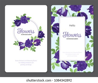 Butterfly pea flowers and leaf on blue background template. Vector set of blooming floral for wedding invitations and greeting card design.