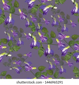 Butterfly pea flowers purple color and green leaves seamless pattern-vector