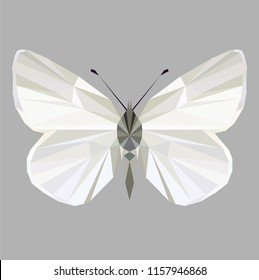 Butterfly polygonal low poly isolated on grey background,symmetrical vector illustration. Insect with geometry triangle. Suitable for printing on a t-shirt. Abstract butterfly of shades of white.