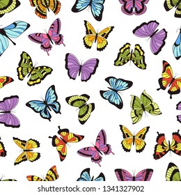 Butterfly seamless pattern. Floral garden print, seamless graphic background with butterflies and flowers. Vector hand drawn sweet insects