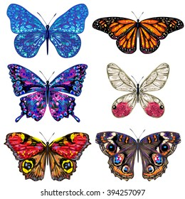 Butterfly. Set of vector colorful butterflies. Butterflies collection. Hand drawn butterflies. Insect isolated on a white background