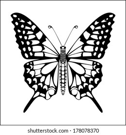 Butterfly silhouette black