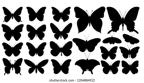 butterfly silhouette, set, collection