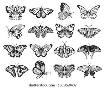 Butterfly silhouette set, wildlife ornament of nature decoration. Nectar feeding insect with two pairs of large wings. Vector hand drawn butterfly illustration
