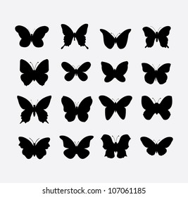 butterfly (vector)