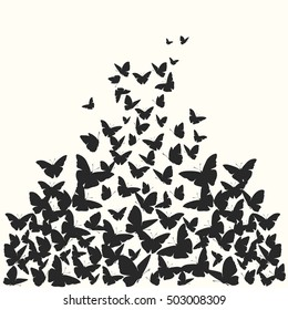 Butterfly vector background. Silhouette illustration